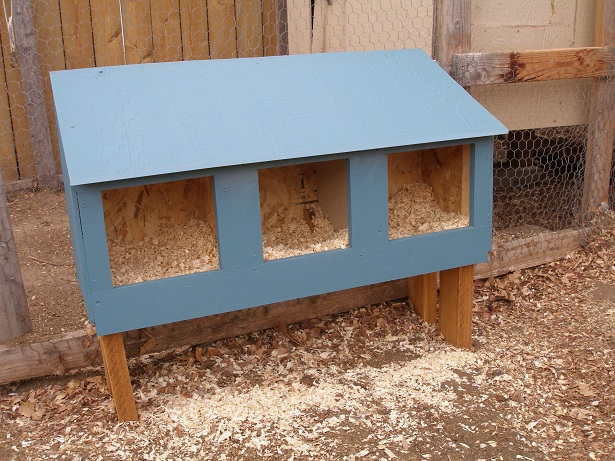 Download Plans For Building A Chicken Nesting Box Hen Ternak