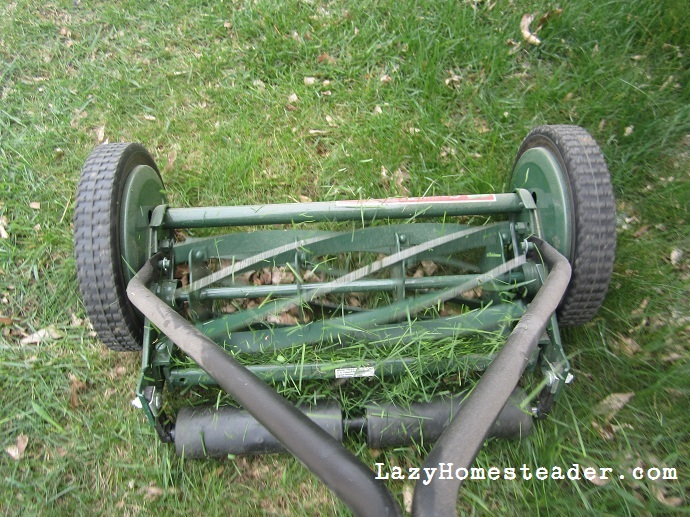 Pros and Cons of a Push-Reel Mower | The Lazy Homesteader